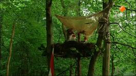 Koekeloere - Arie In De Nesten