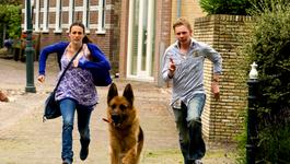 Snuf De Hond - Snuf De Hond En De Ijsvogel (2)