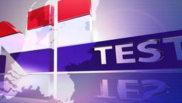 NL test NL Test (voorjaar 2011)