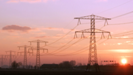 Netwerk (eo, Ncrv) - Kamermeerderheid: Import 'bloedkolen' Moet Transparant