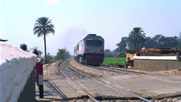 Rail Away - Egypte: Alexandrie - Assuan - Rail Away