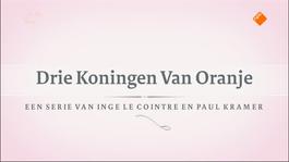 Drie Koningen Van Oranje - Koning Willem Iii