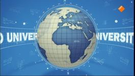 De Wereld Draait Door - Dwdd University Presenteert: De Koe Door Robert Kranenborg