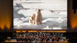 Frozen Planet In Concert - Frozen Planet In Concert