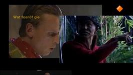 Fryslân Dok - Fier Fan Hûs .. Allinne