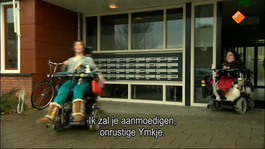 Fryslân Dok - Beheind Yn De Beheining