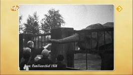 Oudste familiebedrijven van Nederland Burgers' Zoo