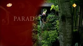 Paradijstuinen - Aad Peters