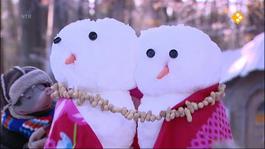 Koekeloere - Sporen In De Sneeuw