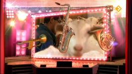 Knoop In Je Zakdoek: Muziek - Wiliam - Knoop In Je Zakdoek: Muziek