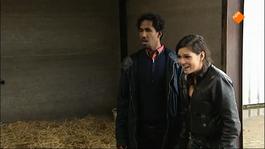 Proefdier - Silke & Pony