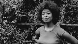 Documentaires Boeddhistische Omroep - Alice Walker, Beauty In Truth