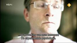 Focus - Het Brein Gekraakt 3 - Focus
