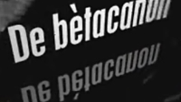 De Bètacanon - Fotosynthese