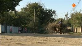 Kerkdienst - Missie In Roemenië