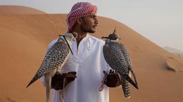 Wild Arabia - Wild Arabia (2) - De Parel Van Het Arabisch Schiereiland
