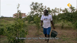 Caribisch Nederland Caribisch Nederland