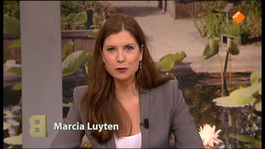 Buitenhof - Bernard Wientjes, Annechien Ten Have, Marianne Thieme, Jules Muis