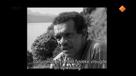Het Uur Van De Wolf - Derek Walcott, Poëzie Is Een Eiland
