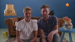 Beestieboys - Beestieboys 1 (seizoen 1)