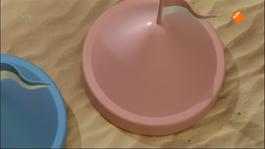 Het Zandkasteel - Wilde Dieren