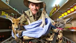 Natuur Op 2 - Kangaroo Dundee (2)