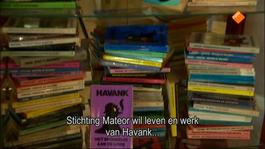 Fryslân Dok - Havank