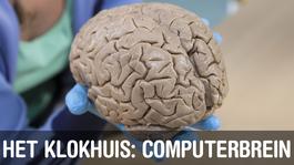 Het Klokhuis - Computerbrein