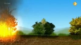 Riskante Regio's - Brandweer In Het Bos (frankrijk)