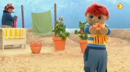 Het Zandkasteel - Blaadjes En Zaadjes