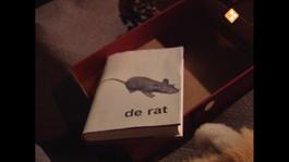 Leesdas Lettervos Boekentas - 9. Wie Woont Hier In Dit Rattenhol?