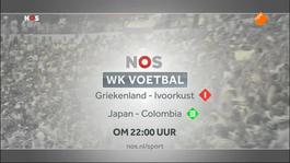 Fifa Wereldkampioenschap Voetbal: Journaal - Fifa Wereldkampioenschap Voetbal: Journaal