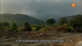 Boeken Op Reis Met Wim Brands - David Grossman