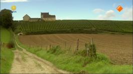 Flikken Maastricht - Nieuwe Wijn