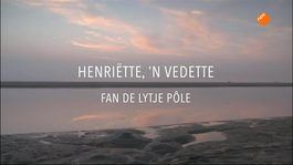 Fryslân DOK Henriette , een vedette van de Lytje Pole