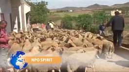 Npo Spirit - Npo Spirit 2 Oktober 2014