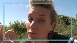 Zappmissie: Het Verborgen Eiland - Jetske Verdenkt Monique