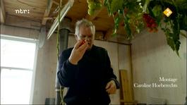 De Wilde Keuken - Tomaat