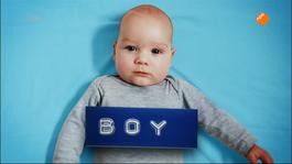 Dus Ik Ben Jr. - Dus Ik Ben Een Jongen/meisje