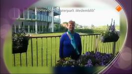 Max Maakt Mogelijk - Verkeersexamen & Moldavië