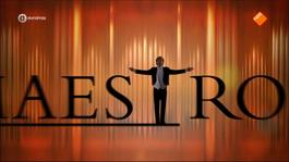 Maestro - Maestro: Finale 2014