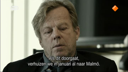 Wallander - De Treurvogel