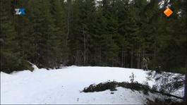 4e Musketier Noorwegen - 4e Musketier Noorwegen (2)