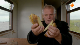 De Wilde Keuken - Friet