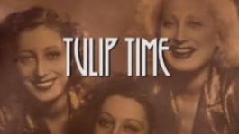 Tulip Time - Tulip Time