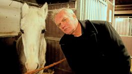 De Wilde Keuken - Paard