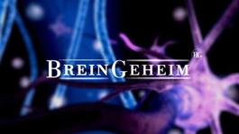 BreinGeheim Het volwassen brein
