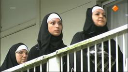 Abi - Pinguin Vrouwtjes