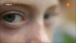 Focus - Focus: Allergieën