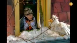 Huisje Boompje Beestje - Het Sneeuwt!